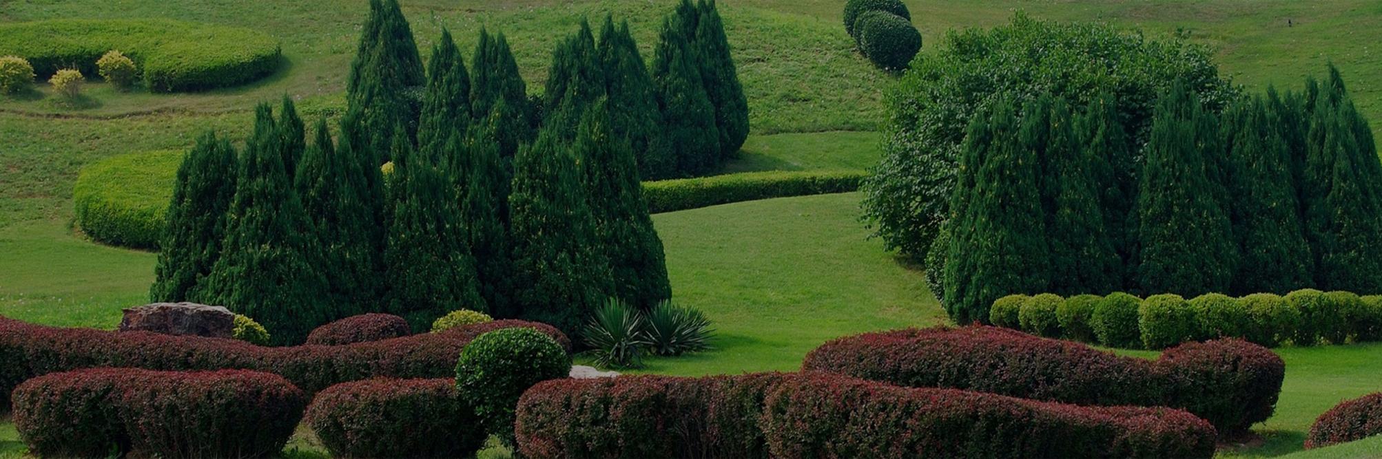 entretien jardin cambrai travaux forestiers saint quentin